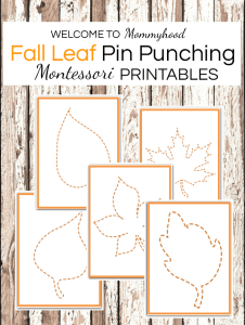 Fall Montessori Activities Leaf Pin Punching