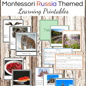 Montessori Russia Unit Study Printables #montessoriactivities