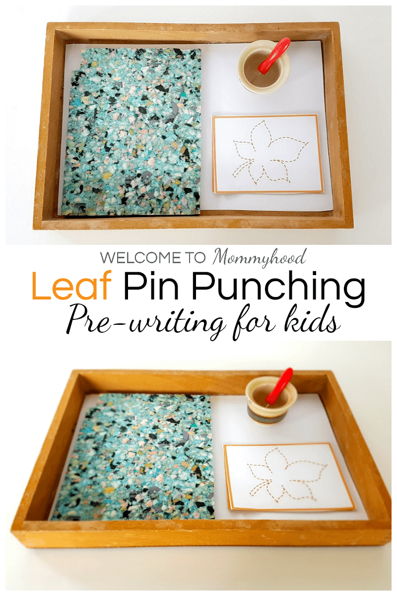 Montessori Fall Activities Leaf Pin Punching