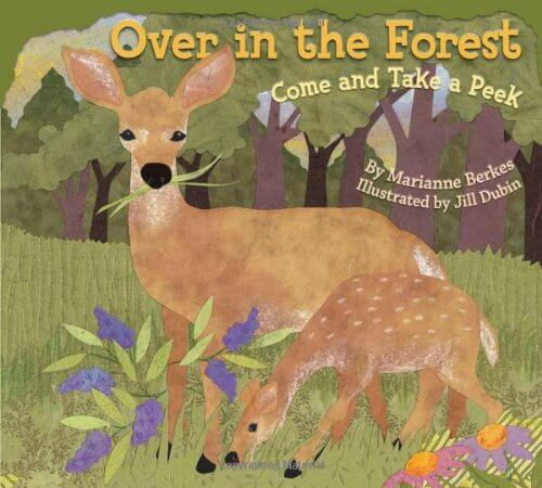 Books about the forest #booksforkids #preschoolactivities #forestbooksBooks about the forest #booksforkids #preschoolactivities #forestbooks