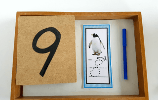 Awesome Penguin Preschool Activities for Perfect Winter Unit Study