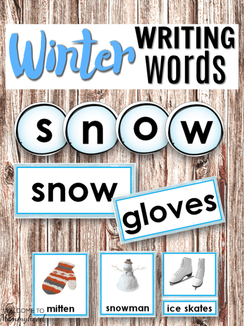 Winter Language Bundle - Montessori 3 part cards, salt tray cards, and winter word cards