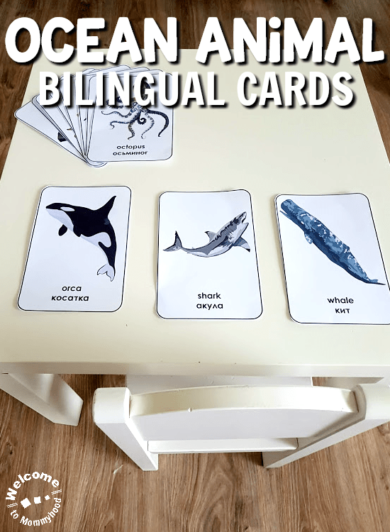 English or Bilingual Russian-English Ocean Animal Cards. Use these adorable cards to teach children about ocean animals!
