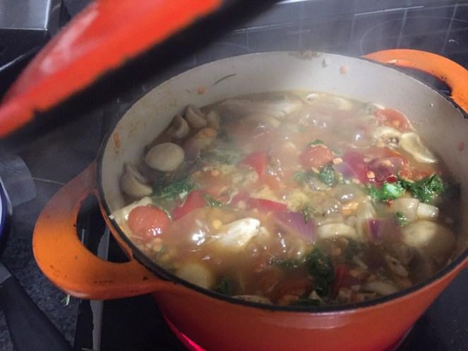 Chicken, Lentil & veg stew
