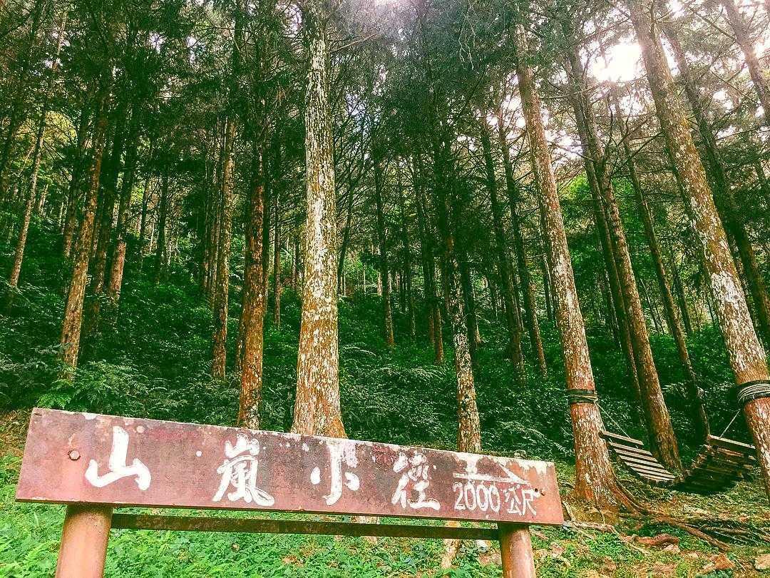惠蓀實驗林場 |山嵐小徑步道