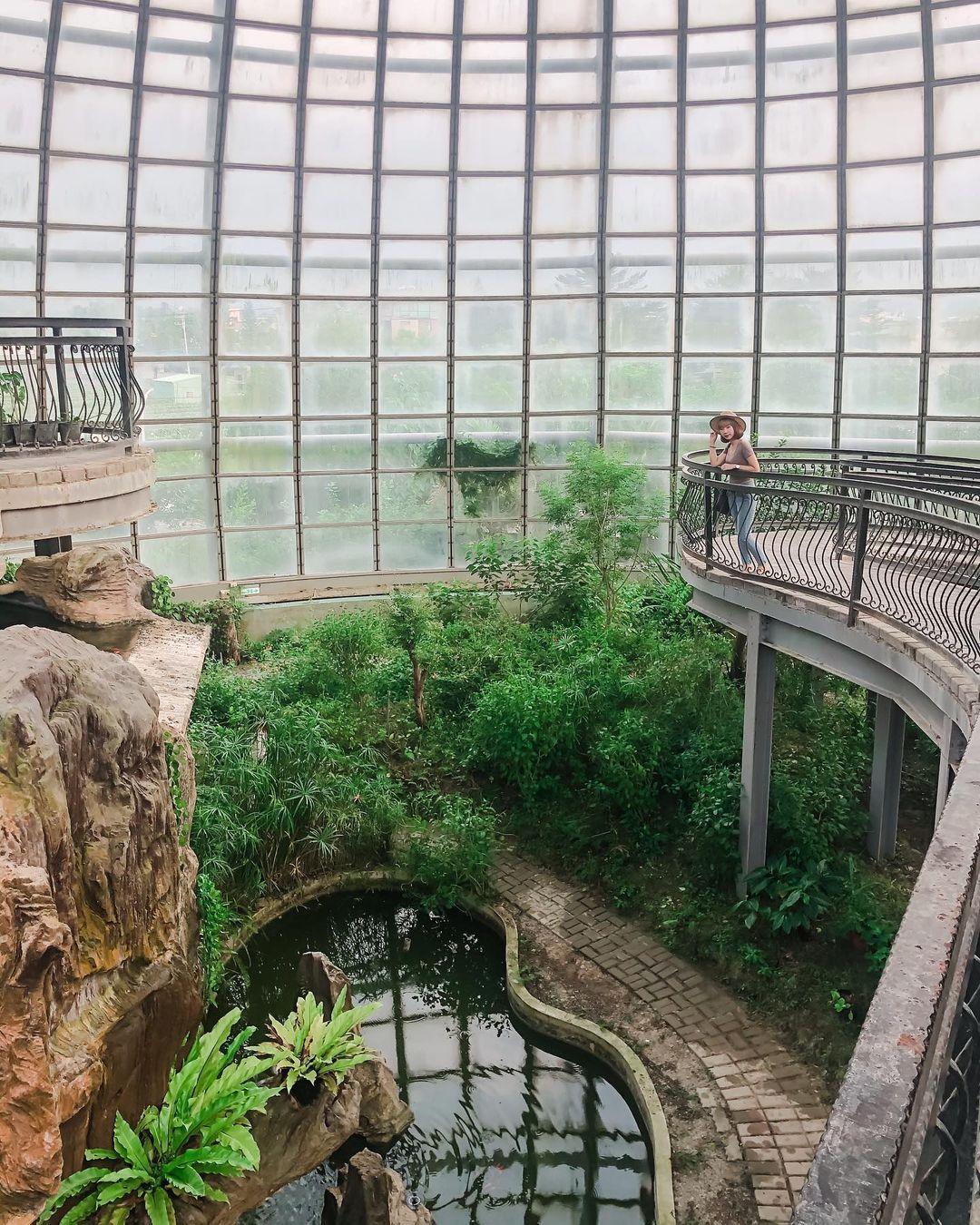 嘉義景點推薦 :新嘉大昆蟲館