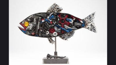 Sram Fish 2 ft wide