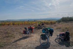 Lunchen tussen de wijnvelden in Spanje