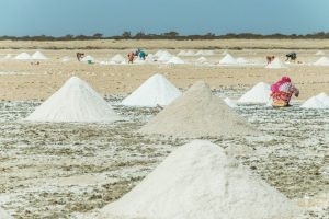 Women working in salt extraction in Senegal