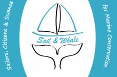 Sail and Whale logo