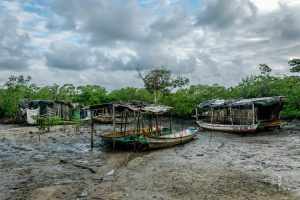 Dried up fishing harbour in a mangrove in Brazil