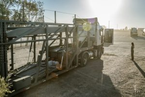 Truck in the morning sun