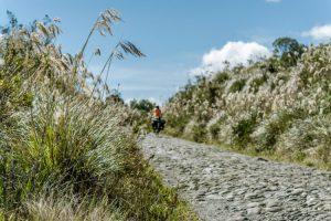 cobblestone road in Ecuador