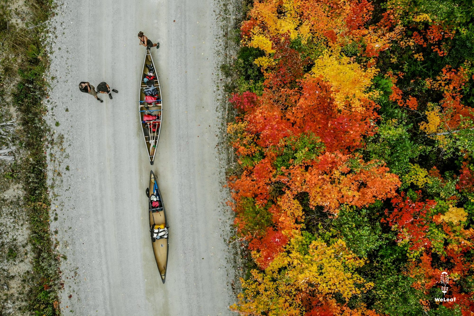 northern forest canoe trail in fall
