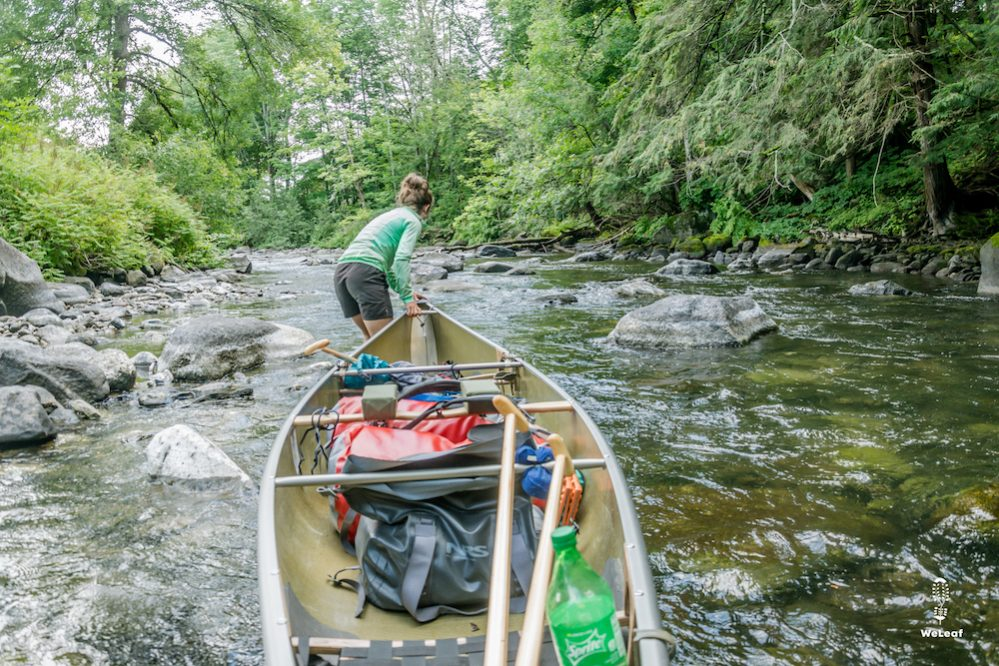 tracking up a canoe in the clyde river