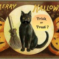 The Halloween Fairy Poem