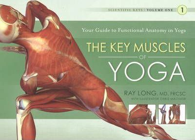 Key Muscles of Yoga