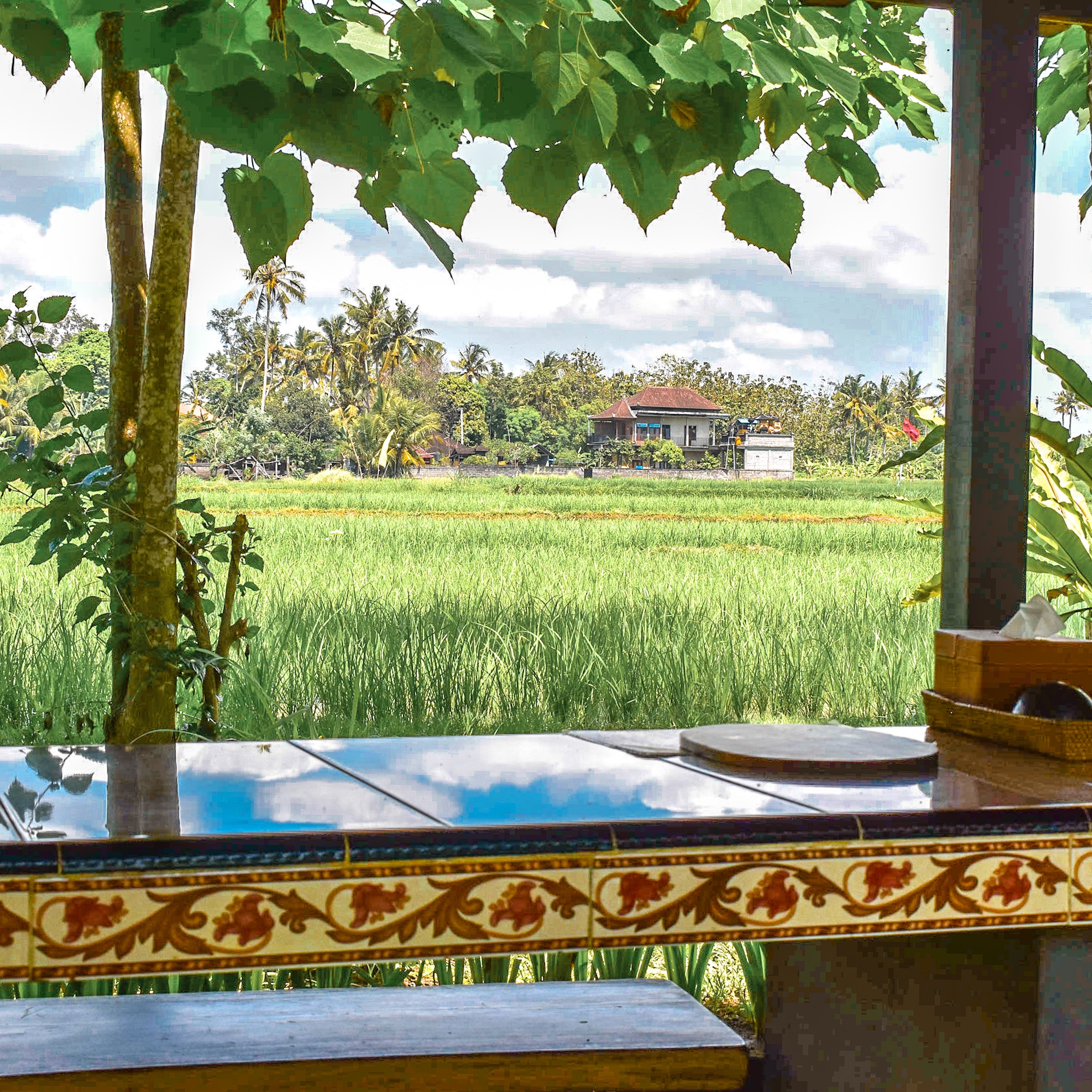 Coffee Plantation Seating Overlooks the Rice Fields in Bali