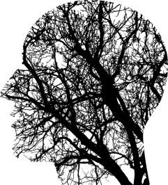 Oppervlakkige gedachtes zijn de takken van een boom
