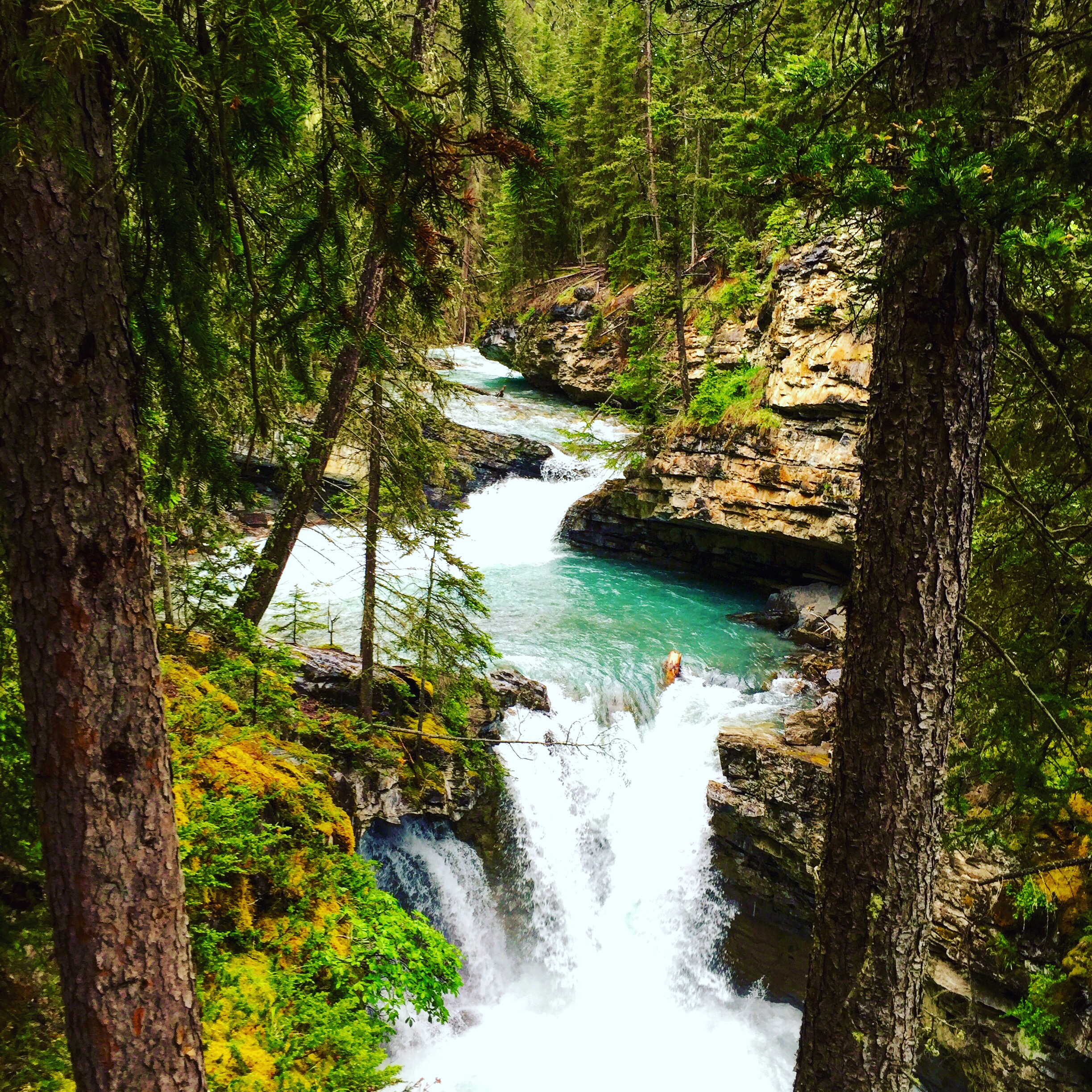 Banff National Park  Summer Experience  VacayHack