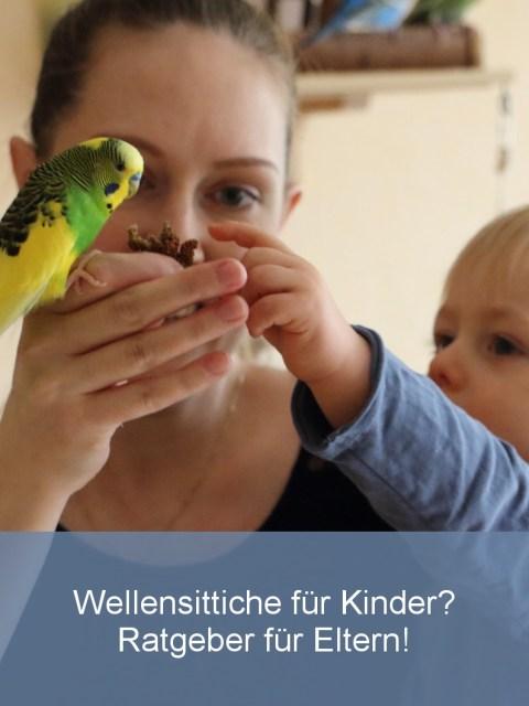 wellensittiche-blog-kinder-haustiere-eltern-teaser