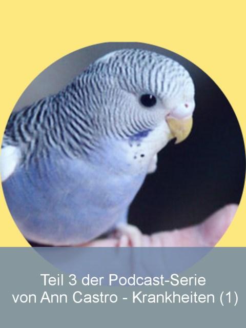 Wellensittiche Blog Krankheiten Podcast Ann Castro Wencke Sabrina Schacht Teaser