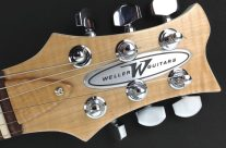 Stageliner White Headstock