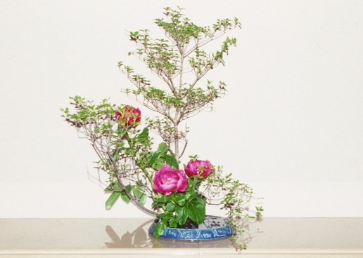 Ikebana Sample photos Emma Wynn (2)