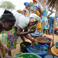 Guinea Bissau: A WellFound Year in Review