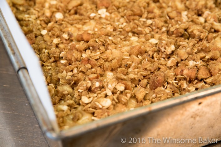 Apple Streusel Snack Cake -6