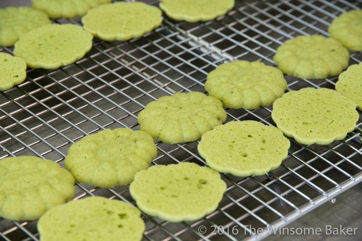 Matcha + White Chocolate Sandwich Cookies -7