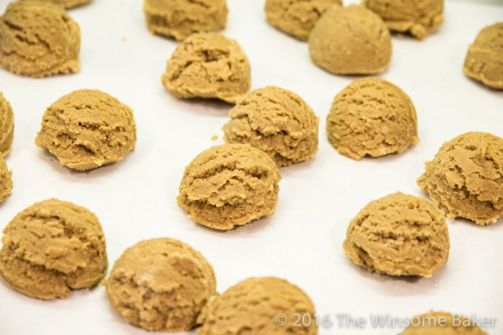 Gingernuts -6
