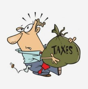 Where can I pay my Palm Beach County Property Taxes?