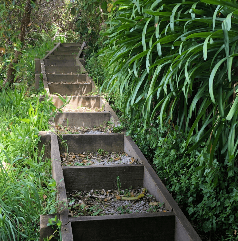 Screen Shot 2020-01-01 at 2.57.05 PM