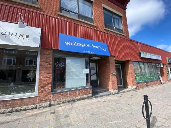 Wellington Seafood WWBIA DIR 20210350 768x576