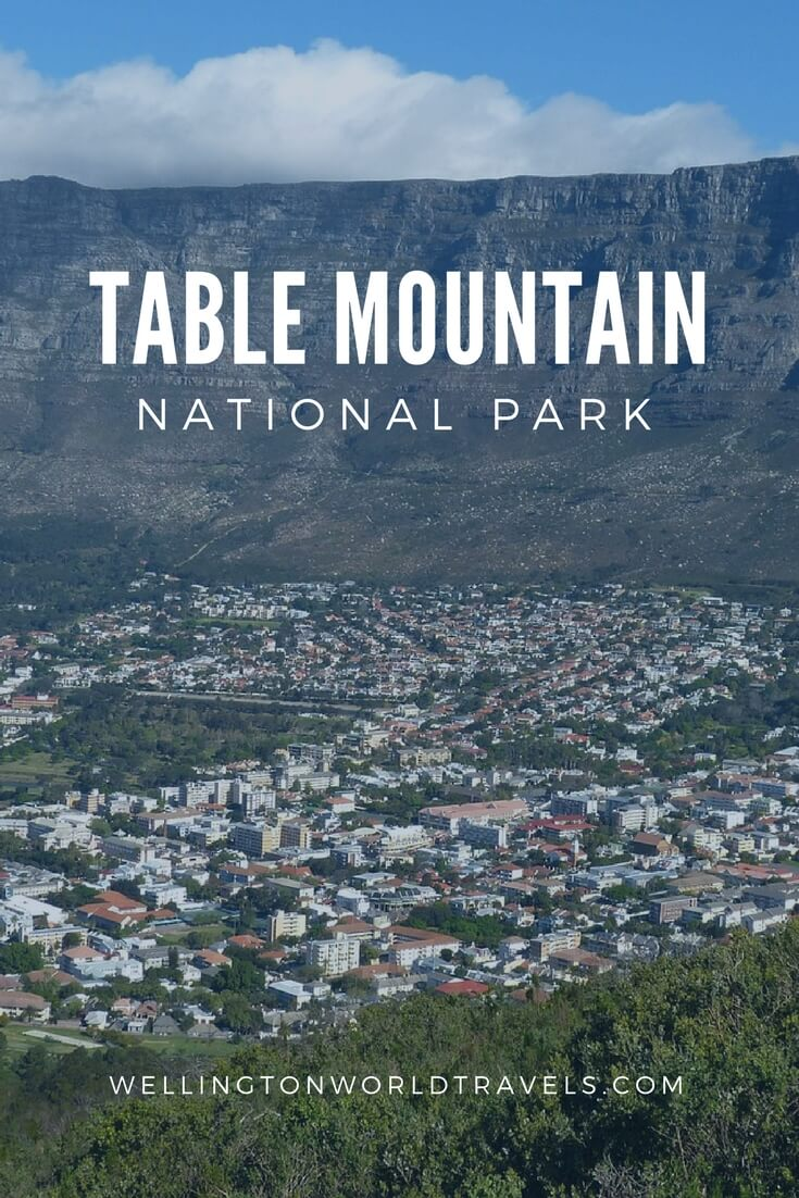 Table Mountain National Park - Wellington World Travels   travel destination   travel bucket list ideas #Photodiary #photoessay