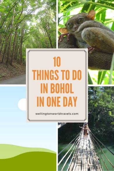 10 Things To Do in Bohol in One Day - Wellington World Travels | Travel guide | Travel destination | travel bucket list ideas #Philippines