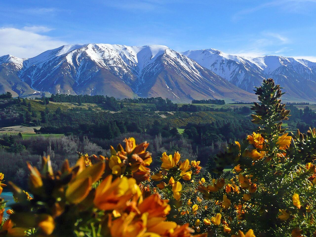 4 Family-Friendly Places to Visit in New Zealand