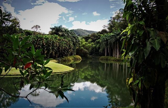 Inhotim, Brazil
