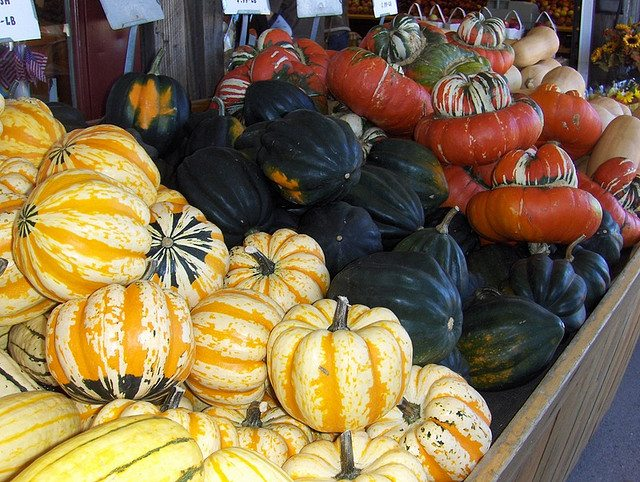 Winter Squash Health Benefits