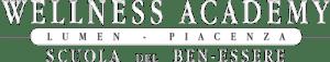 Wellness Academy logo