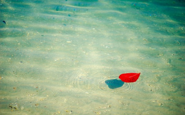Float Therapy for Anxiety, Stress and Sleep - Milwaukee Therapist ...