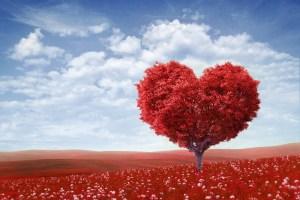 #heart#love#power#healing#health
