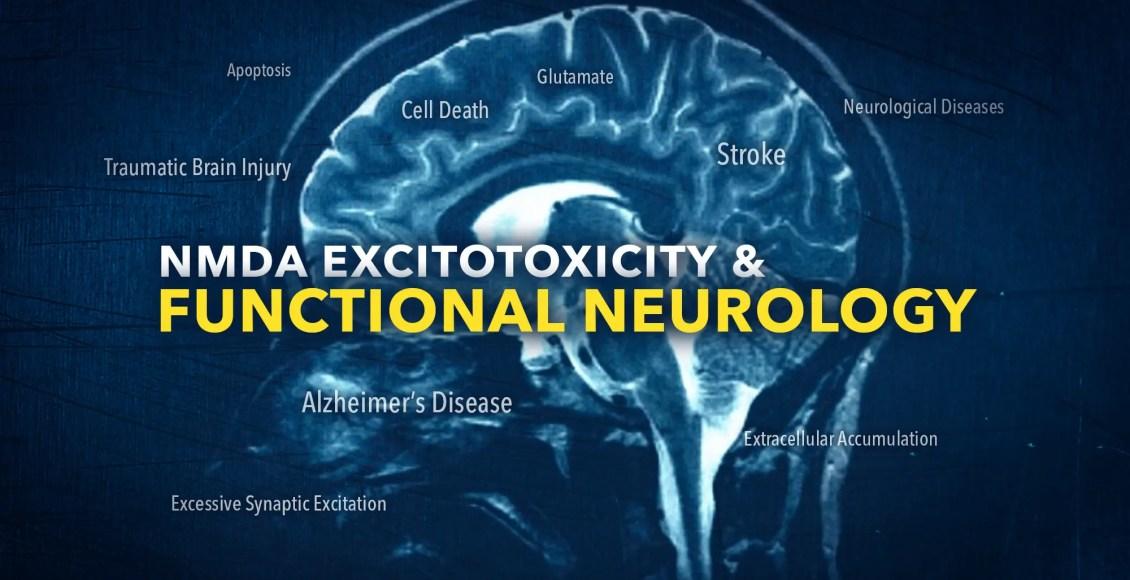 NMDA Excitotoxicity in Functional Neurology | El Paso, TX Chiropractor