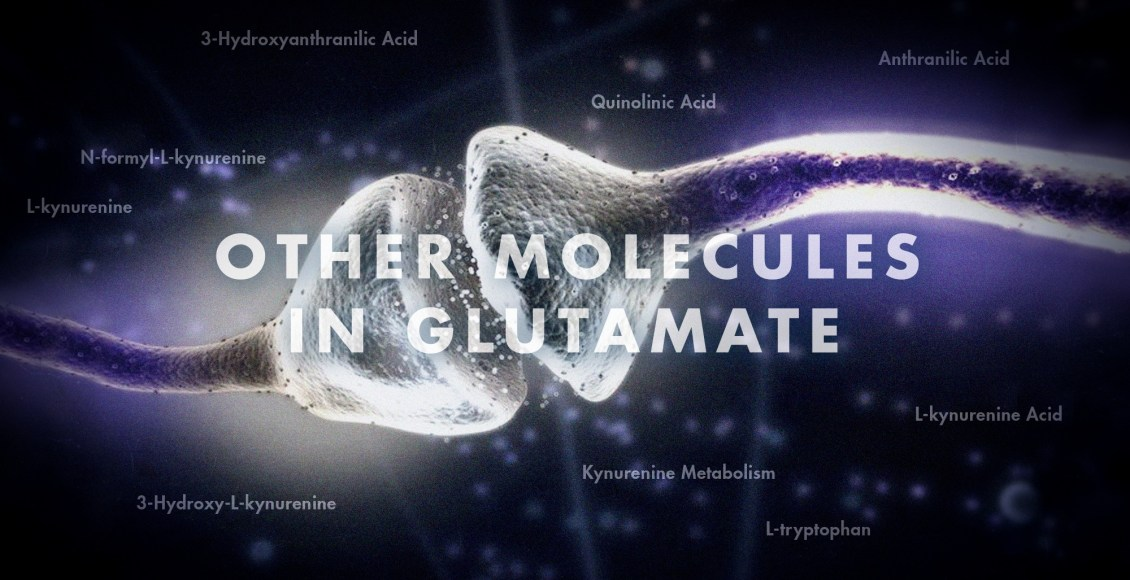 Functional Neurology: Other Molecules in Glutamate | El Paso, TX Chiropractor