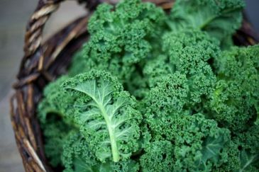 kale-in-rustic-basket-on-daylight-close-up-royalty-free-image-628364204-1533848320
