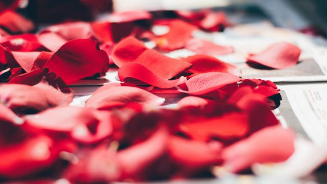 Ayurveda loves indulging in Roses for Beauty and Health
