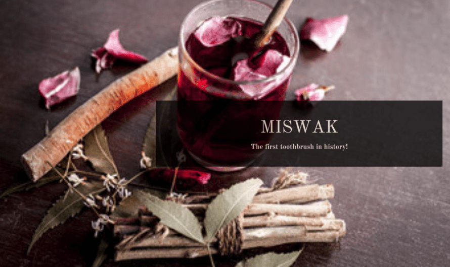 Miswak: A Traditional Alternative to the Modern Toothbrush