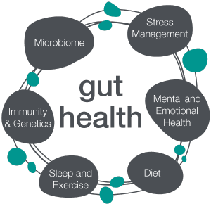 Gut Health for Recovery from Fatigue and to Boost Energy