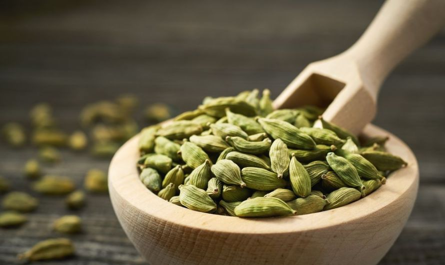 Cardamom Supports Digestive Health | Ayurveda Remedy